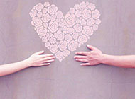 浪漫的粉色心形玫瑰背景图片