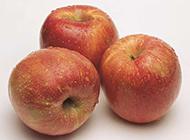 水洗后的红色苹果图片