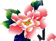 牡丹花图片素材精美工笔画素材