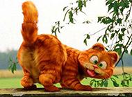 萌宠加菲猫可爱动漫图片壁纸