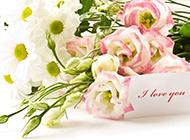 玫瑰花清新花束图片素材