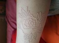 鸽子血手臂隐形花纹身图片