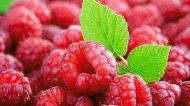 可口树莓唯美红色风景高清大图
