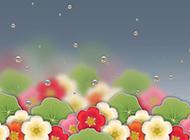 花图片大全花卉壁纸精选