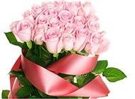 玫瑰花粉色背景图片素材