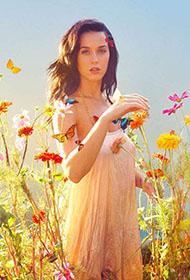 凯蒂·佩里演绎浪漫风情唯美花海写真