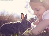 小动物可爱萌宠图片大全素材
