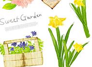 植物与花卉水彩画图片
