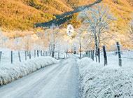 十月最美大自然风景图片