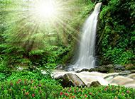 林间瀑布风景高清图片