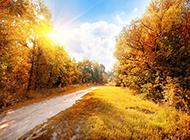 最新秋天美丽风景图片欣赏