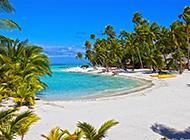 仙境般的夏日海滩风景图片