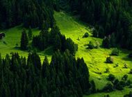 瑞士绿色养眼风光高清桌面壁纸