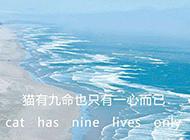 简约唯美的纯文字大海背景图片