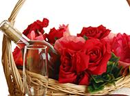 美酒玫瑰展现唯美法式浪漫图片