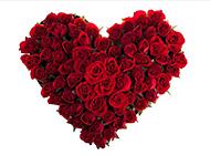 浪漫七夕心形玫瑰花图片欣赏