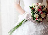 浪漫的婚纱与玫瑰摄影图片