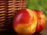 香脆可口的油桃高清图片