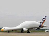 天鹅牌飞机爆笑雷人图片