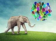 大象与气球高清图片素材