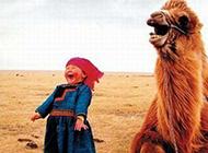 大家齐欢乐超级爆笑图片