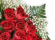娇艳的红玫瑰花束高清大图