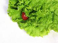 无公害的绿色蔬菜图片