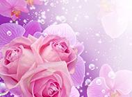 唯美花朵卡通背景图片欣赏