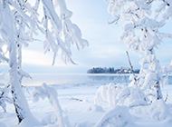 美好的雪景高清风景图片