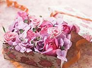 礼物盒里的玫瑰花图片欣赏