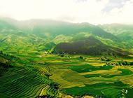 清爽舒适的绿色田园风景图片背景