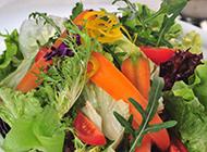 五彩田园蔬菜沙拉图片