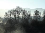 清晨的云雾风景实拍图片