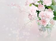粉色康乃馨ppt背景图片