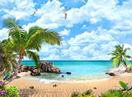 海边的椰林风景高清图片