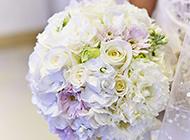 婚礼上的一束白玫瑰高清图片
