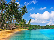 清新怡人的海岛沙滩风景图片