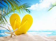 夏日清凉沙滩风景图片大全
