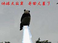 回火星的熊猫搞笑PS图片