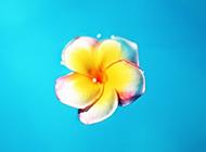 浪漫唯美的热带海岛沙滩风景壁纸