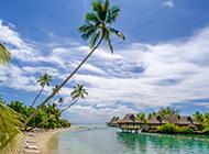 清新怡人美丽海岛沙滩风景图片