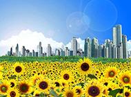 超清唯美向日葵的ppt背景图片