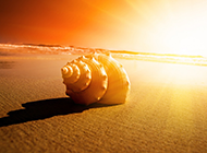 浪漫夕阳沙滩高清唯美背
