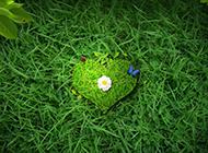 绿色草地小巧爱心背景素