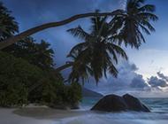 清风旖旎的海岛沙滩风景图片