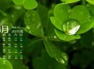 2015年4月日历壁纸精选绿色护眼高清幸运草植物素材图片下载1