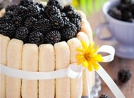 长方形水果蛋糕图片 美味水果蛋糕图片大全