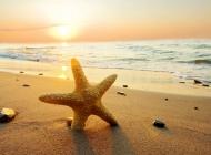 落日海边雪景图片 海边落日唯美紫霞图片