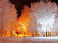 雪景高清唯美图片大全 静谧唯美的雪景高清图片
