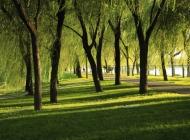 发几张颐和园的照片。请各位指导。